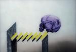 Crâne n° 1  - huile sous verre - 50 x 70 cm - 2003