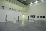Vue d'exposition - Richard Fauguet/Daniel Schlier - Frac Poitou-Charentes, Angoulême - 2015