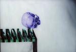 Crâne n° 7 - huile sous verre - 50 x 70 cm - 2003