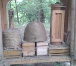 Es gibt verschiedene Arten von Bienenstöcken.