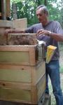 ...und entnimmt eine Honigwabe.