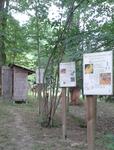 Im Eingangsbereich befinden sich zunächst Infotafeln über Bienen und Honig.