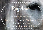 https://www.roy-anes.com/