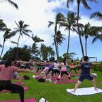 ハワイ ヨガ パークヨガ アウトドア ツアー イベント