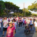 ハワイ ウェルネス ウォーク イベント 乳がん ツアー イベント
