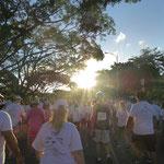 ハワイ ウェルネス ウォーク イベント 乳がん カピオラニ公園 ツアー イベント