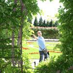 im Garten von Schönbrunn
