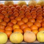 viele lecke Orangen