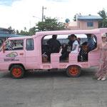 unser rosa Hotelvan