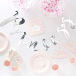 Prinzessinen Box in rosa/silber