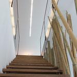 Bambusgesäumte Treppe ins Attika mit Lichtband.