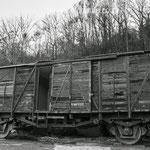 Vagón. PVP. 40 €