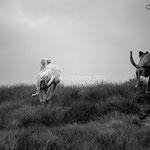 Libertad. Técnica Blanco y Negro. Distinguida con 2 premios en Concursos Fotográficos del Grupo Aficionados a la Fotografía en Flickr con más de 4000 miembros.  PVP. 45 €