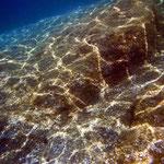 foto fondale marino