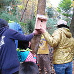 鳥の巣箱設置