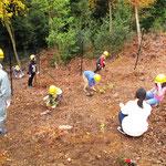 オオモミジなどの広葉樹105本の植樹