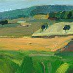 Felder Odenwald 23x50 cm