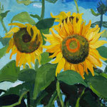 Sonnenblumen100x130 cm