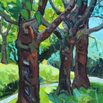 Kirschbäume 120x100cm