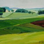 Felder Odenwald 40x50cm