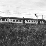 Treno vicino Empoli