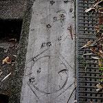 足跡はよくある。工事用コーン痕は珍しい