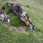 Irish Stone, Valentia Island