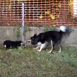 spielen mit Mama im Garten