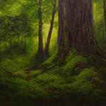 Mooswald (Öl auf Leinwand 70x50)