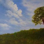 Ziehende Wolken (Öl 80 x 60)