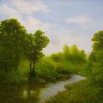 Flusslandschaft (Öl auf Hdf 50x40)