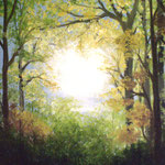 Sonnenlicht (Öl 40 x 50)