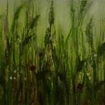 Wiese (Öl auf Hdf 50x25)