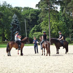 Dressurtraining mit Jacques Pailloncy