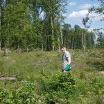 Auch die Jugend ist für ihren Wald aktiv