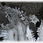 Eiskunst mit Schlamm - Reinheimer Teich © Jennie Bödeker