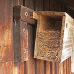 Nest eines fleißigen Stars - Hütte bei Messel © Hans Günter Abt