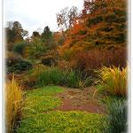 Herbstbunter Teich - Botanischer Garten © Jennie Bödeker