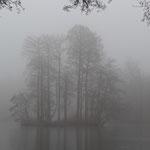 Nebel über dem Steinbrücker Teich © Hans Günter Abt