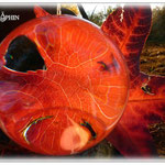 Rot-Laub-Kugel - Botanischer Garten DA © Jennie Bödeker