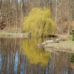 Erste Frühlingsfarben - Fischerhütte © Robert Bender