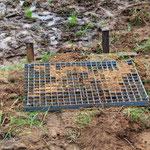 Schlechter Fußabtreter für Nesträuber