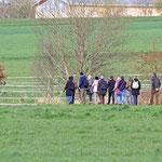 Exkursionsgruppe im Messeler Feld