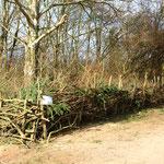 Fertiger Naturholzzaun