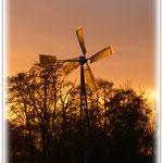 Windrad in der Abendsonne - Hergershäuser Wiesen © Jennie Bödeker