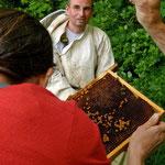 Auch Teilnehmer/innen können Waben anfassen