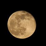 Vollmond für Ostern - Mondaufgang in Messel © Hans Günter Abt