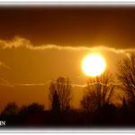 Abendsonne über den Hergershäuser Wiesen © Jennie Bödeker