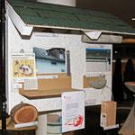 Nisthilfenwand des NABU für bedrohte Schwalben und Segler inkl. Bienenhotels