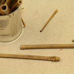 Fertige Röhren für die Eiablage der Insekten